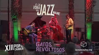 gatos revoltosos al festival pop al carrer a la vora del jazz mare 2017