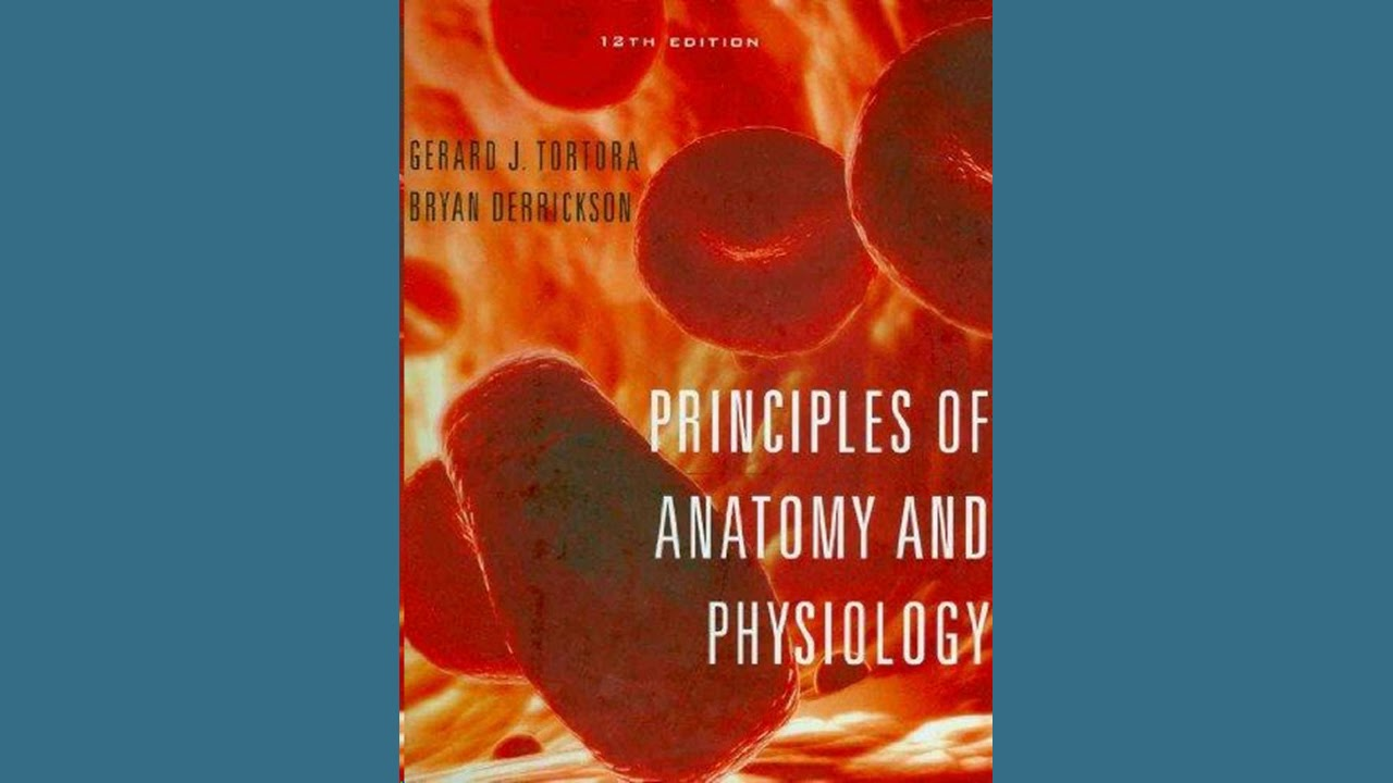 Practice Test Bank for Principles of Anatomy and Physiology by ...