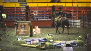 Cheval Canadien (Cowboy Extreme)