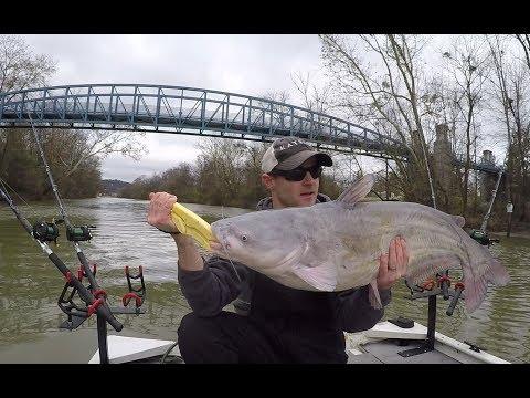 Backwater Creek Fishing For Catfish