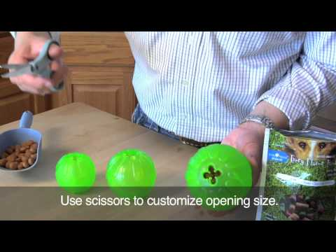 Treat Dispensing Chew Ball HD
