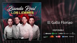 Banda Real - El Gallo Floriao