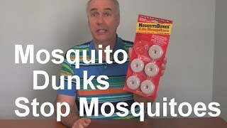 Mosquito Dunks Review | EpicReviewGuys in 4k CC