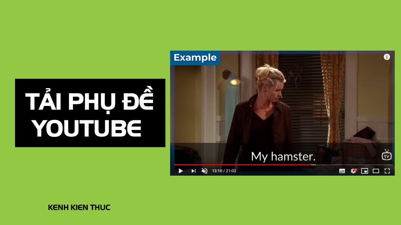 Hướng dẫn tải phụ đề trên YouTube hiệu quả nhất (Download Subtitles)