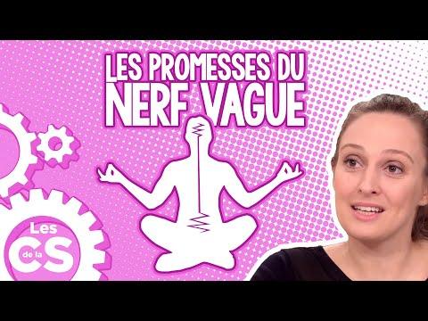 Les Promesses Concrètes Du Nerf Vague - Les Chroniques De La Science