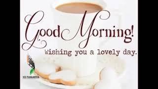 Goodmorning evry bary