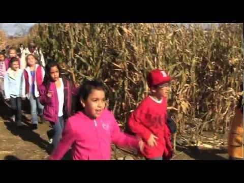 Escobar Corn Maze in Portsmouth
