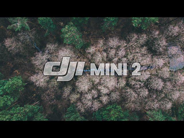 🍿 Chill Drone Video | DJI MINI 2 Footage