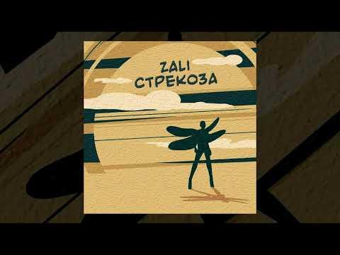 MC Zali - Стрекоза (Премьера трека, 2019)