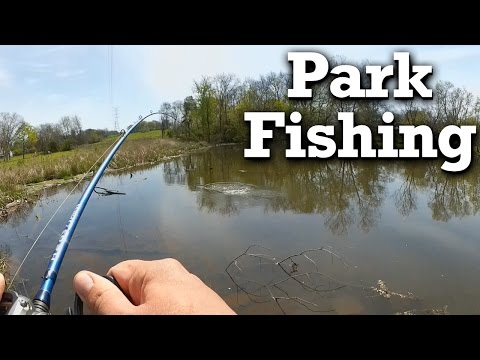 Bank Fishing  For Bass - Public Park Bass From Shore