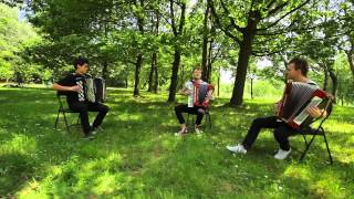 Yann Tiersen - J'y Suis Jamais Alle - Crazy Accordion Trio cover