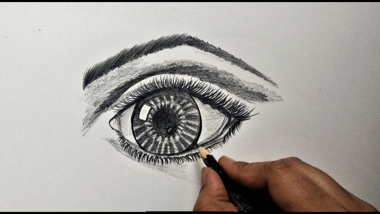 How to draw human eye for beginners easy and step by step video