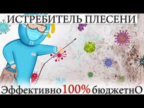 Плесень грибок и другие бактерии. Убийственный эффект мощное средство, как избавиться от заразы.