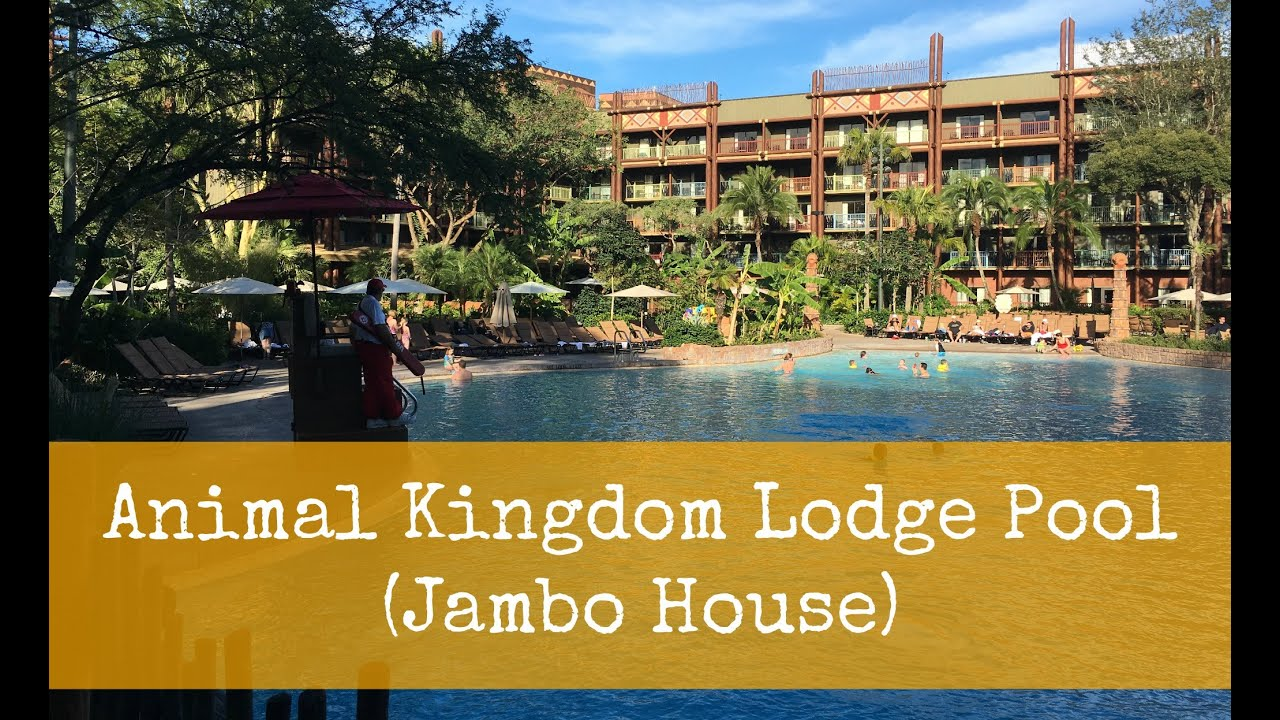 Dvc Animal Kingdom Jambo House Pool Youtube