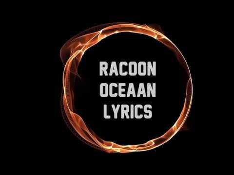 Racoon - Oceaan JBX