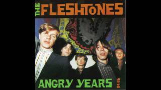 Fighting For A Lost Cause - Fleshtones [Whitestone, New York] - 1986