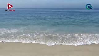 Acceso Directo - ''Las olas del mar '' con el Dr. Alec Torres Freyermuth