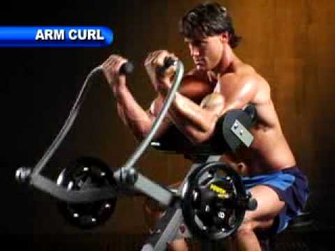 Powertec Leverage Arm Curl Fitnessxpress Com Au Youtube