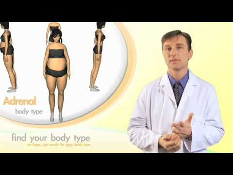 The Adrenal Body Type