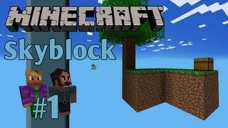 #1 Minecraft Lee and Stuart Play Skyblock !