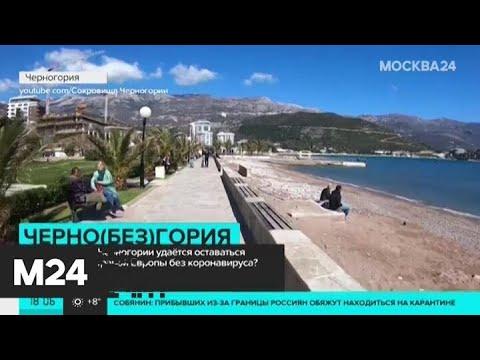 В Черногории закрыли аэропорт из-за коронавируса - Москва 24