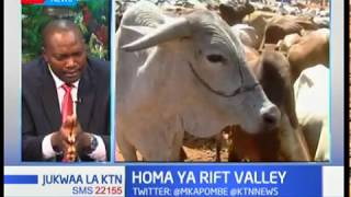 Jinsi ya kukabiliana na ugonjwa wa mifugo wa Homa ya Rift Valley | Sehemu ya Kwanza