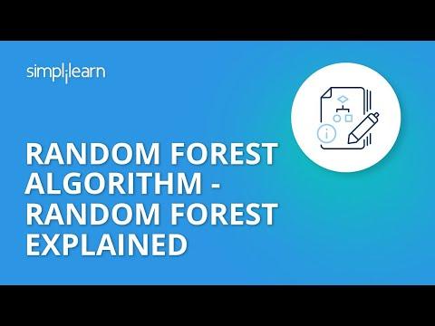 Random Forest Algorithm - Random Forest Explained | Random Forest In Machine Learning | Simplilearn