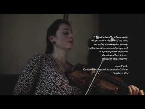 The Violin's Delight / P. Nikitassova