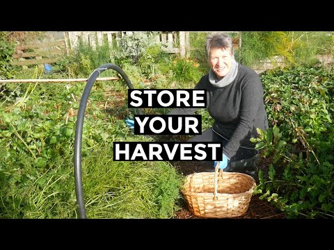 Preserving The Harvest | How to store homegrown food