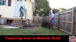 Tearing out a mulch bed