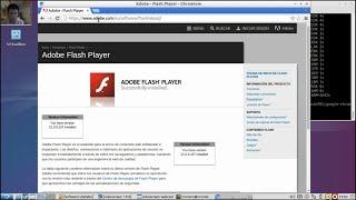 Install Flash Player on Chromium - Instale Flash Player en Chromium