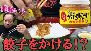 【食レポ】これが餃子!?かけるギョーザを食べてみた!! thumbnail