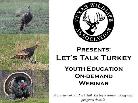 Let's Talk Turkey On-demand Youth Webinar preview
