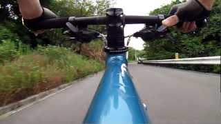 自転車(車載カメラ付きのMTB)で走ったオンボード映像。 大阪府八尾市...