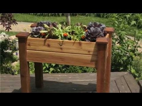 Vegetable container gardening youtube - Better homes and gardens container gardening ...