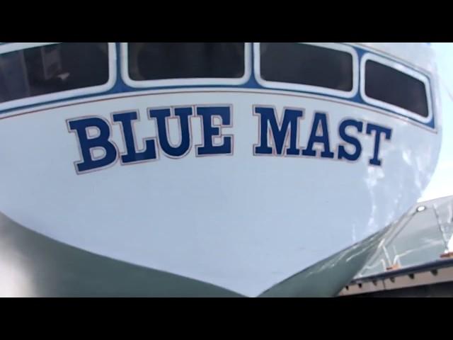 Blue Mast 05/22/18