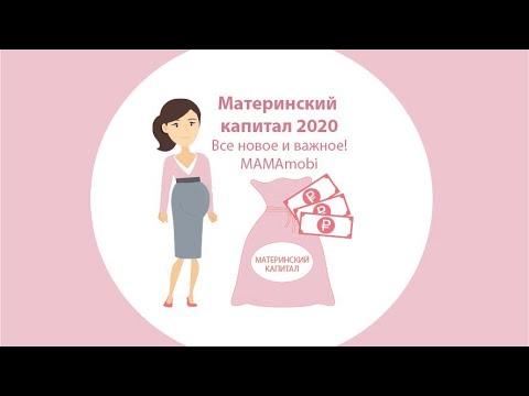 Материнский капитал в 2020 году. Что нового и какие изменения? MamaMobi
