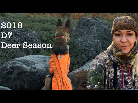 Deer Hunting On California Public Land 2019 D7
