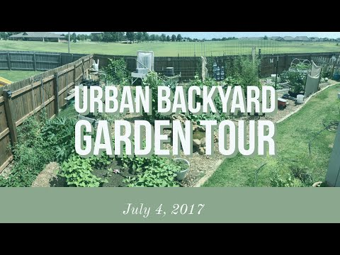 July 4, 2017 Early Summer Garden Update/Tour (Urban Zone 7 O