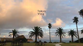 도쿄 브이로그 |  도쿄에서 갈 수있는 가장 맑은 바다…