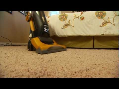 Will Ripping Up Your Carpet Help If You Have Bad Allergies? — From the makers of ZYRTEC®