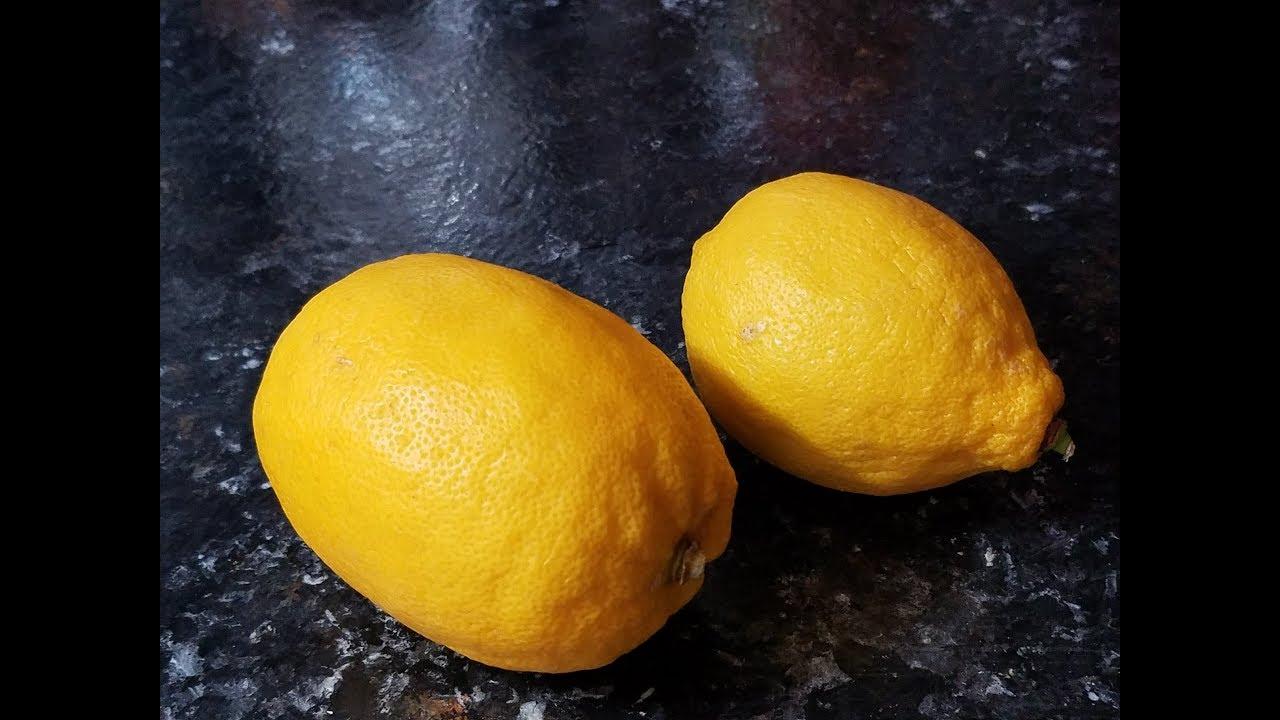 Sorrento Lemons - Weird Fruit Explorer