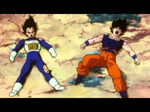 TFS - Vegeta and Goku get hit in the Dick!