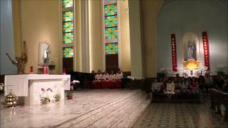 Publication Date: 2017-05-16 | Video Title: 新主任司鐸授職典禮