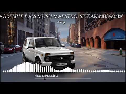 Spitak Niva Mix 2019 #2  (MUSHO MAESTRO  FT  AGRESICE  BASS)