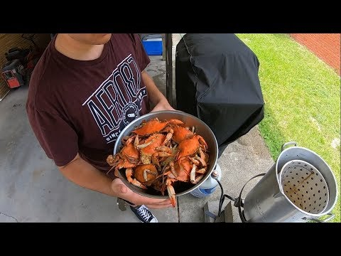 How To Catch Blue Crabs (with Fishing Poles!)  Gulfport Harbor Catch And Cook..