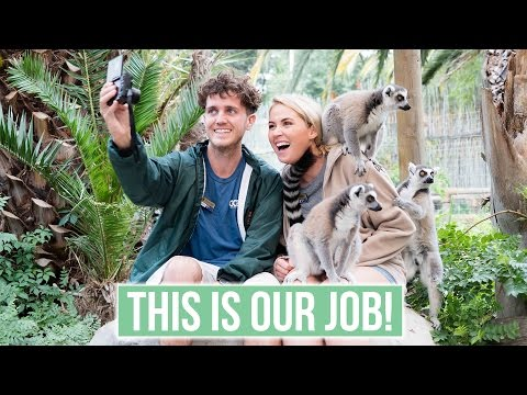 BEST JOB IN THE WORLD!! Volunteering With African Animals