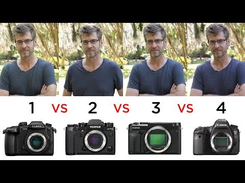 Do Larger Sensors Produce Different Looking Images?