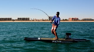 Anglers Dragged to Sea by Giant Fish - paddleboard fishing