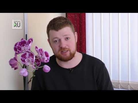 Орхидея: где ее главное место в доме?